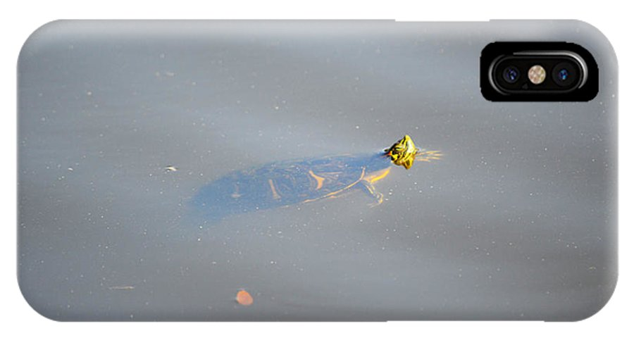 Florida IPhone X Case featuring the photograph Turtle Nose by Linda Kerkau