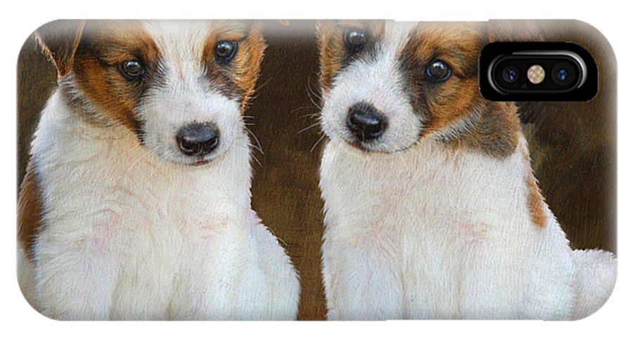 Animal IPhone X Case featuring the painting Twin Puppies Portrait by R christopher Vest