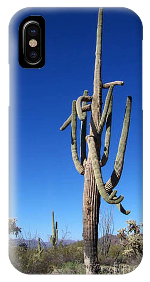 Sahuaro IPhone X Case featuring the photograph Twisted Sentinal by Kathy McClure