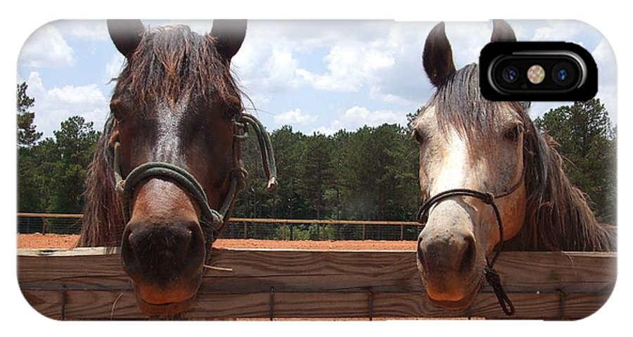 Horses IPhone X Case featuring the photograph Two Horses by Lisa Wormell