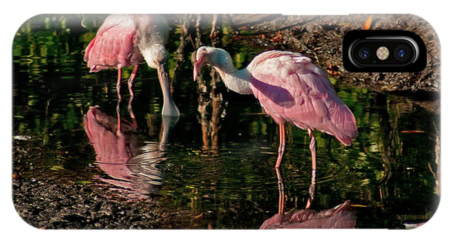 Spoonbill IPhone X Case featuring the photograph Two Pink Spoonbills by Stephen Whalen