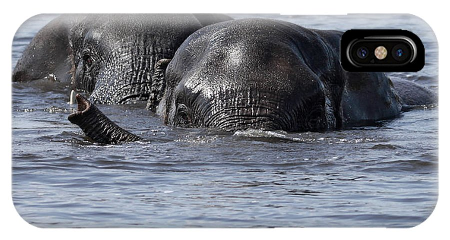 African Elephant IPhone X Case featuring the photograph Two Swimming Elephants by Liz Leyden