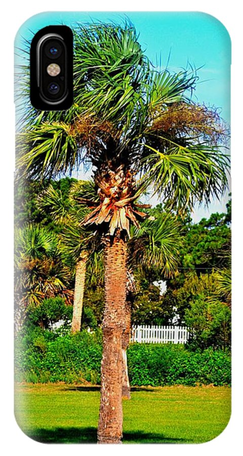 Palm Tree IPhone X Case featuring the photograph Tybee Palm by Tara Potts