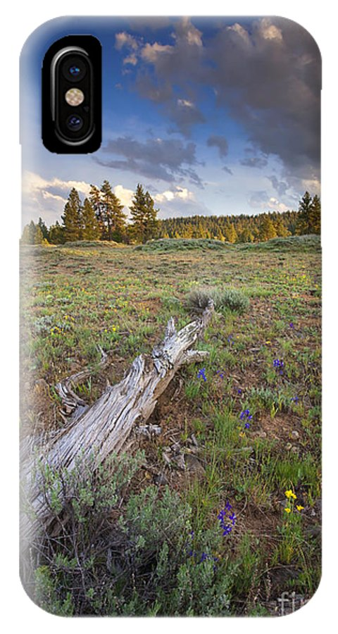 Meadow. Rocky IPhone X Case featuring the photograph Under Stormy Skies by Mike Dawson