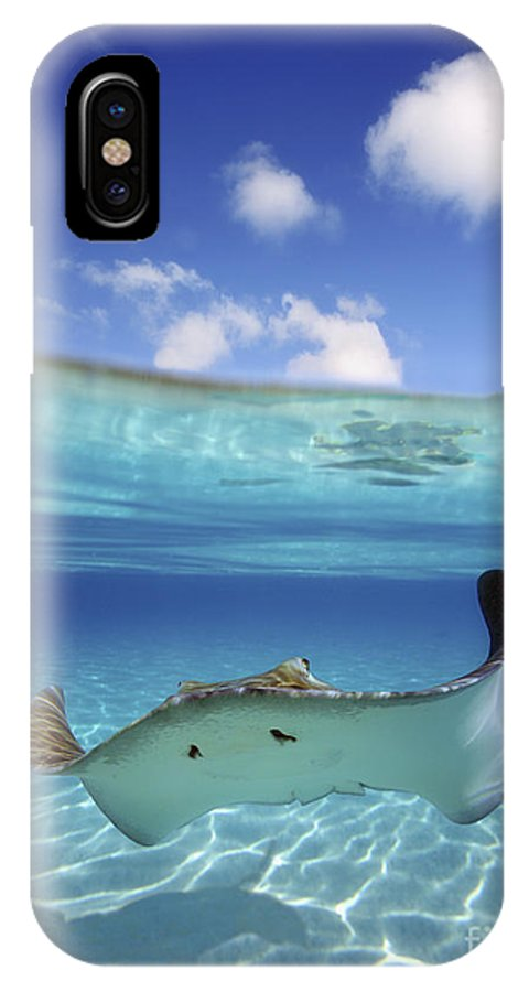 Above IPhone X Case featuring the photograph Underwater Stingray 3 by M Swiet Productions
