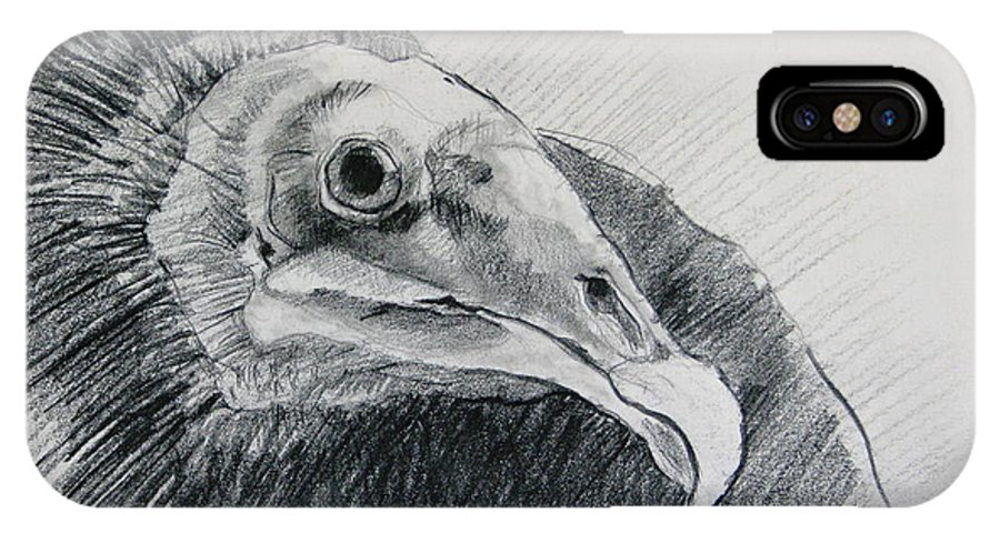 Vulture IPhone X Case featuring the drawing Unexpected Model by Rory Sagner