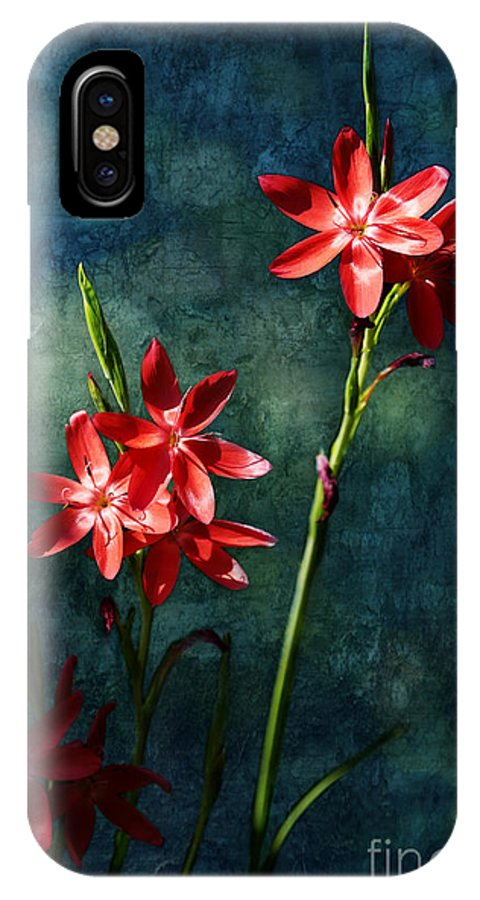 Vermilion IPhone X Case featuring the photograph Vermilion Flowers by Belinda Greb