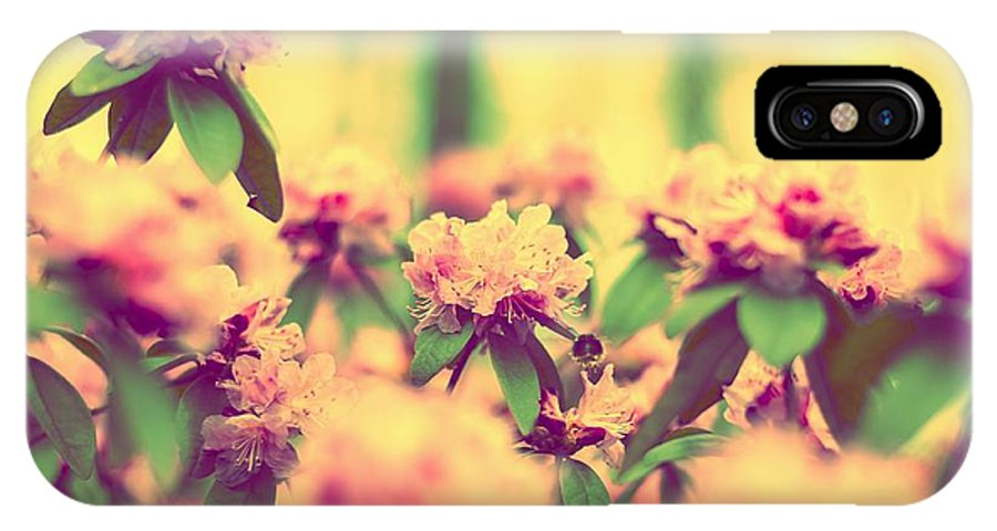 Bumblebee IPhone X Case featuring the photograph Vintage Bumblebee's Bush by Yevgeni Kacnelson