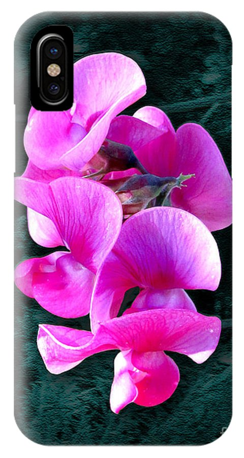 Violet IPhone X Case featuring the photograph Violet Sweet Pea by John Timble