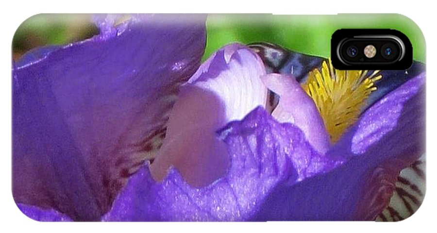 Orchid IPhone X Case featuring the photograph Visual Song by Stephen Martin