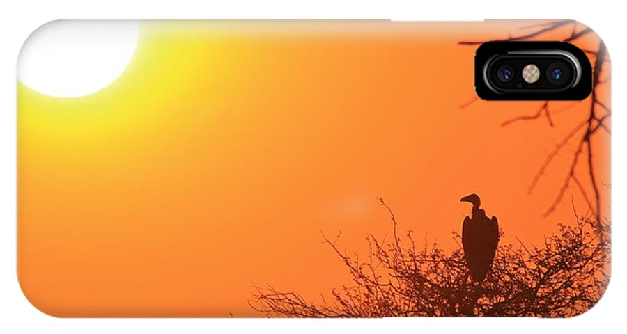 Africa IPhone X / XS Case featuring the photograph Vulture Sunset Silhouette by Hermanus A Alberts
