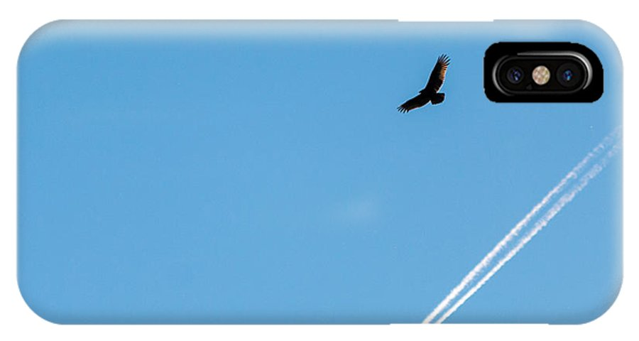 Above IPhone X Case featuring the photograph Vulture Underlined by Gaurav Singh