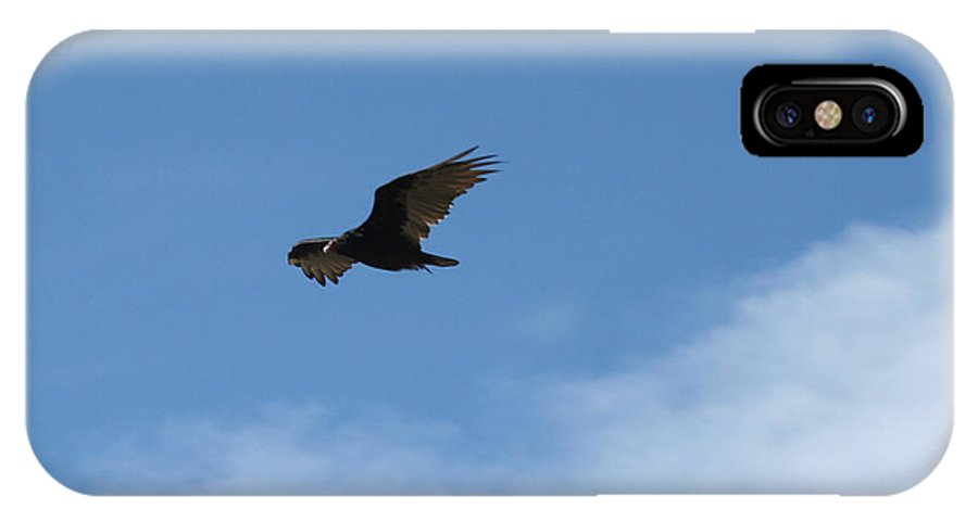 Vulture IPhone X Case featuring the photograph Vulture Vs Jet by Ric Bascobert