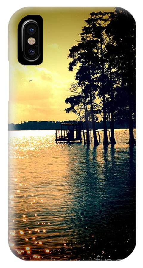 Water IPhone X Case featuring the photograph Wading Pine by Heather Taylor