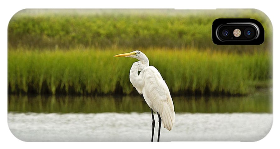 Egret IPhone X Case featuring the photograph Waiting On Dinner Time by Scott Pellegrin