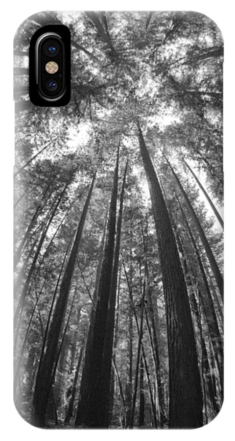 Black And White IPhone X Case featuring the photograph Walk In The Redwoods 6 by Remy Gervais