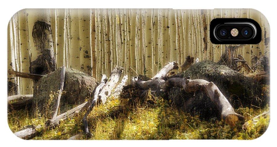 Fall IPhone X Case featuring the photograph Wall Of Aspens by Saija Lehtonen