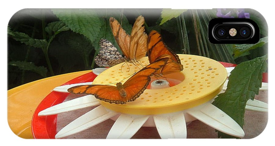 Butterfly IPhone X Case featuring the photograph Warm Colorful Butterflies by Barbara McDevitt