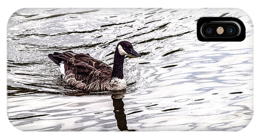 Water IPhone X Case featuring the photograph Wascana-35 by David Fabian