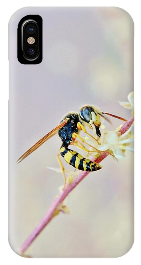 Wasp; Purpel Eyes; Insect; Garden; Nature; Yellow; Black; Decorative; Detail; Macro; Pest Control; Biocontrol; Flower; Plant; IPhone X Case featuring the photograph Wasp2 by Werner Lehmann
