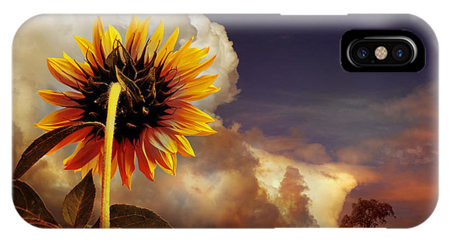 Sunset IPhone X Case featuring the photograph Watching The Sun Set by Mal Bray