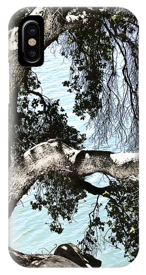 Del Valle IPhone X Case featuring the photograph Water Beyond The Tree by Karen W Meyer