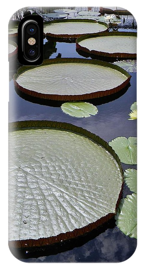 Water Garden IPhone X Case featuring the photograph Water Garden by Jean Goodwin Brooks