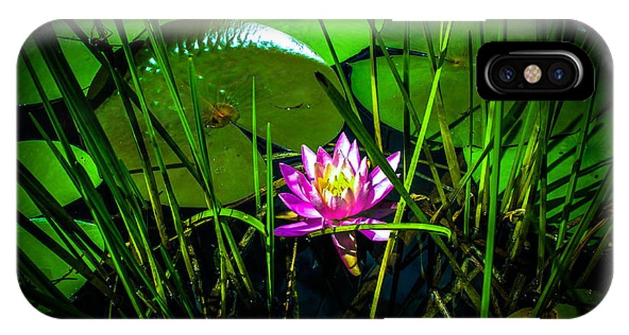 Lily IPhone X Case featuring the photograph Water Lily 3 by Sherman Perry