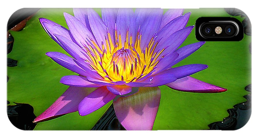 Water Lily IPhone X Case featuring the photograph Water Lily by Ben Lavitt
