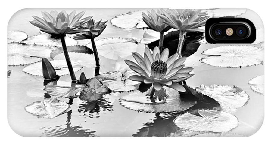 Water Lily IPhone X Case featuring the photograph Water Lily Study - Bw by Nikolyn McDonald
