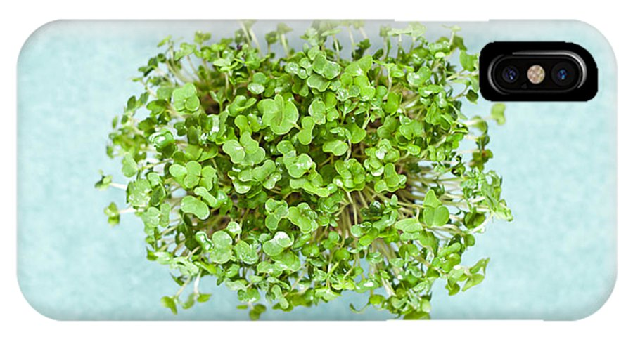 Background IPhone X Case featuring the photograph Watercress by Tom Gowanlock