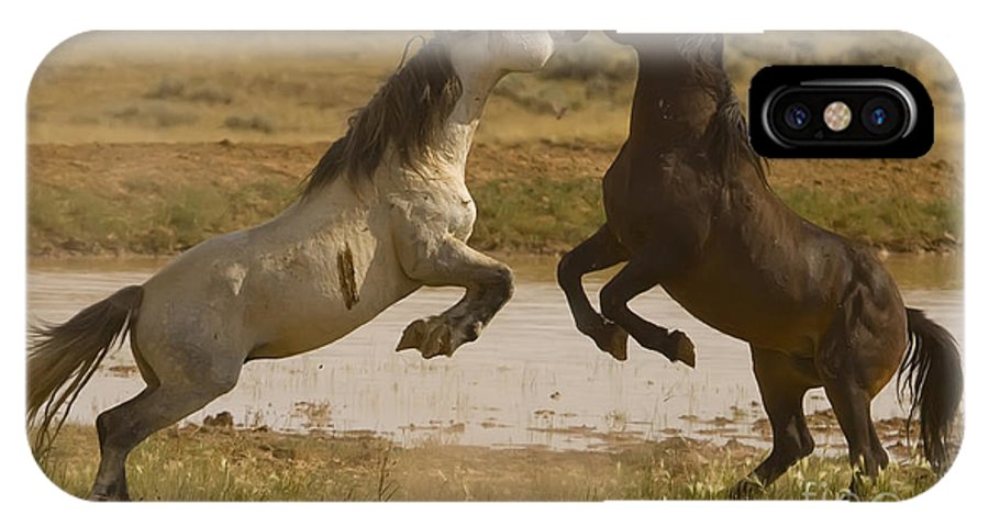 Wild Horses IPhone X Case featuring the photograph Waterhole Challenge by J L Woody Wooden