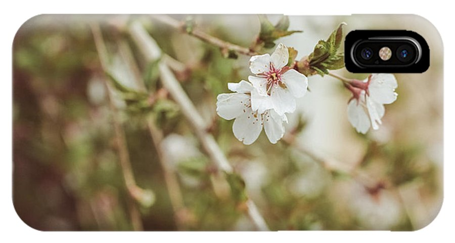 Weeping Cherry IPhone X Case featuring the photograph Weeping Cherry Tree by Elizabeth Thomas