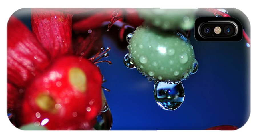 Photography IPhone X Case featuring the photograph Wet Berries by Kaye Menner