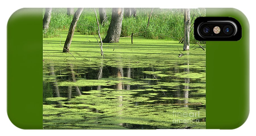 Landscape IPhone X Case featuring the photograph Wetland Reflection by Ann Horn