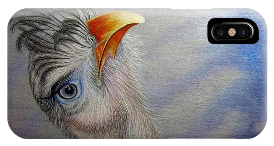 Bird IPhone X Case featuring the drawing What Did You Say by Jo Prevost