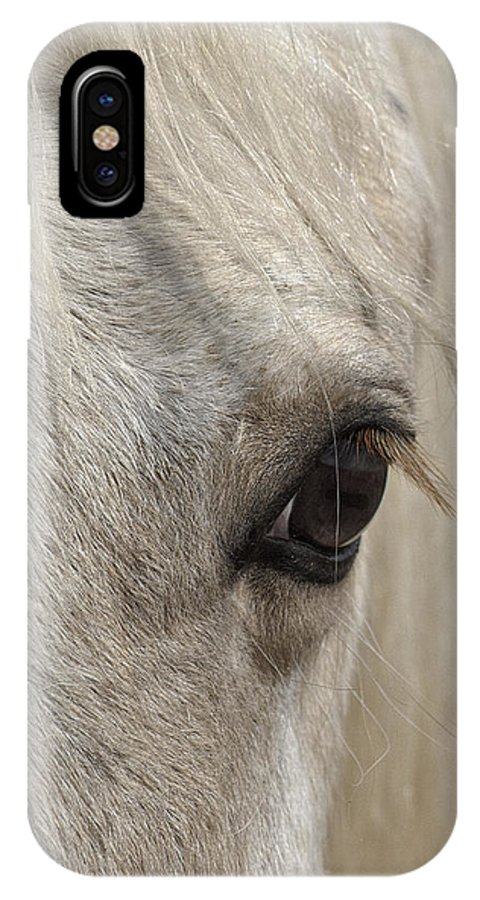 White Beauty IPhone X Case featuring the photograph White Beauty by Wes and Dotty Weber