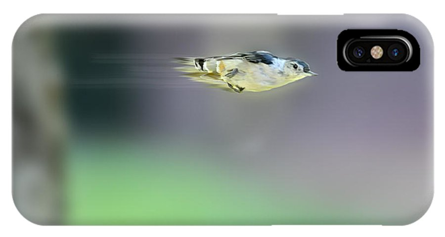 White-breasted Nuthatch IPhone X Case featuring the photograph White-breasted Nuthatch Flying Fast by Dan Friend