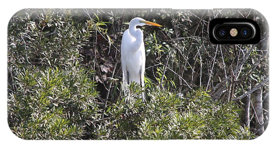 Egret IPhone X Case featuring the photograph White Egret In The Swamp by Christiane Schulze Art And Photography