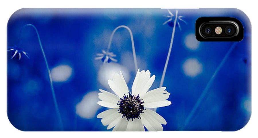 Art IPhone X Case featuring the photograph White Flower by Darryl Dalton