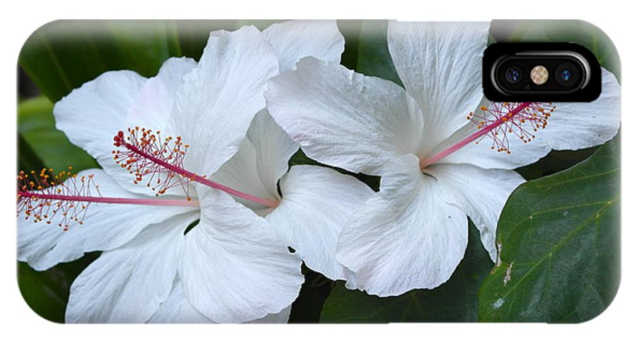 Hibiscus IPhone X Case featuring the photograph White Hibiscus Trio Waikiki by Michele Myers