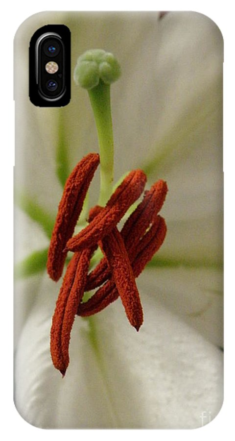 Lily IPhone X Case featuring the photograph White Lily by Lainie Wrightson