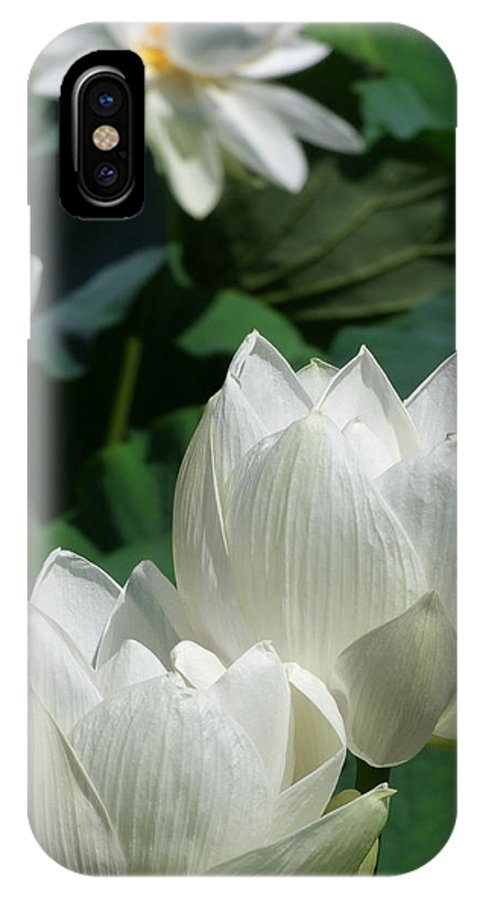 Lotus IPhone X Case featuring the photograph White Lotus by Larry Knipfing