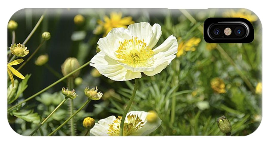 Poppy IPhone X Case featuring the photograph White Poppy by Carol Bradley