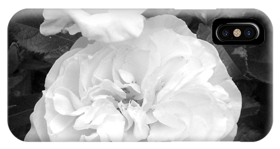 Floral IPhone X Case featuring the photograph White Rose You Are Heavenly by Sholeh Mesbah
