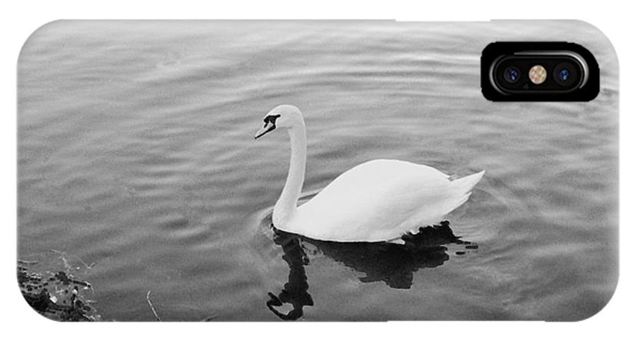 Photography IPhone X Case featuring the photograph White Swan Solitary by Richard Morris