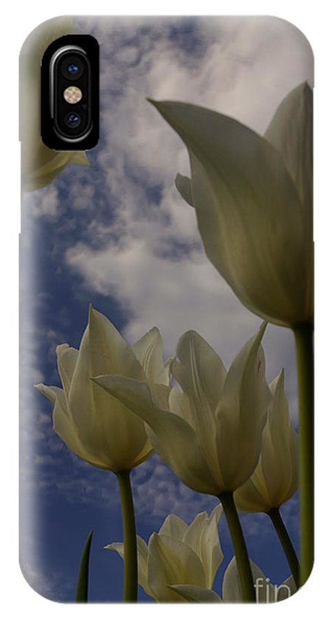 Flowers IPhone X Case featuring the photograph White Tulips by Jeffery L Bowers