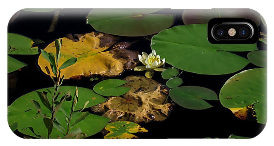 White Waterlily IPhone X Case featuring the photograph white waterlily - Nymphaea odorata - 09SE04 by Robert G Mears