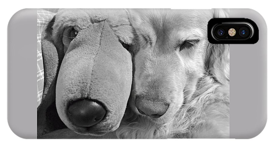 Golden Retriever IPhone X / XS Case featuring the photograph Who Has The Biggest Nose Golden Retriever Dog by Jennie Marie Schell