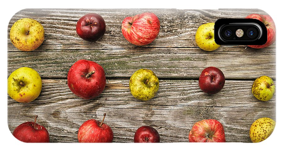 Wild Apples IPhone X Case featuring the photograph Wild Apples by Carol Sullivan